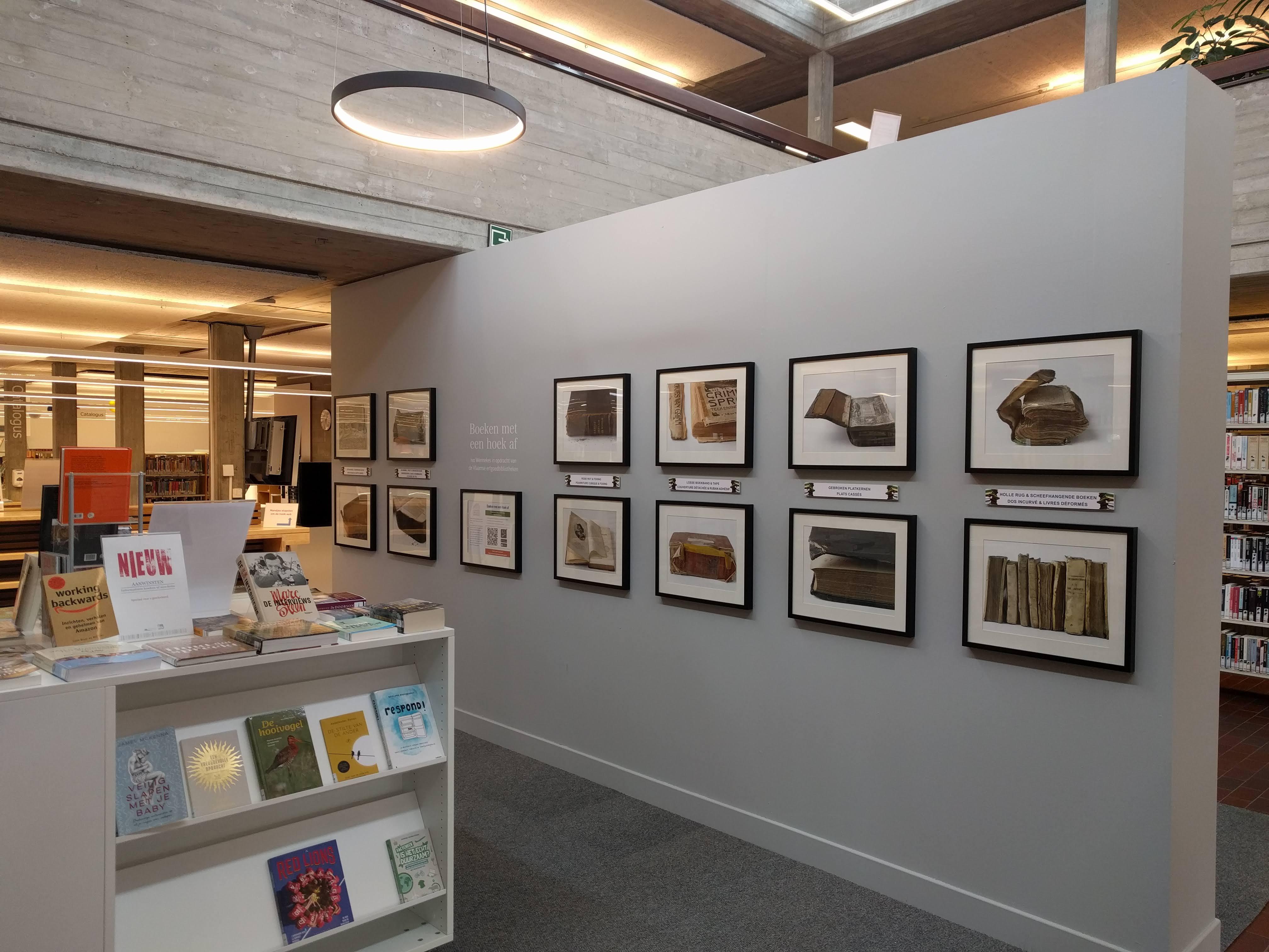 fotokaders hangen aan de muur in een bibliotheek
