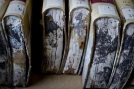 Schimmel op boeken ten gevolge van waterschade