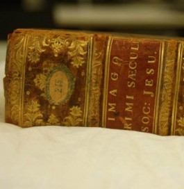 Rug van een boek met goudstempeling