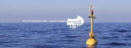 Logo Informatie aan Zee met de zee op de achtergrond
