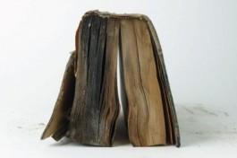 Ernstig verkleefd boekblok als gevolg van waterschade, vuil en schimmel