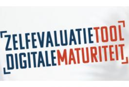 Blauwe en rode tekst: Zelfevaluatietool Digitale Maturiteit