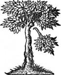 Logo van CERL