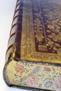 Bijbel gebonden en met versierde snede door Albert Magnus, 1670