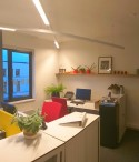 Kantoorruimte met bureaus, kasten en planten