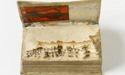 Boek aangetast door papiervisjes