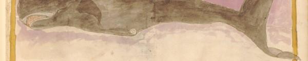 Handschrift met afbeelding van een walvis